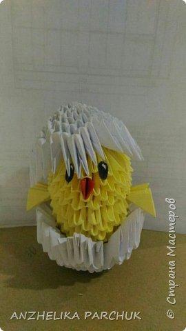Цыпленок в скорлупе  фото 1