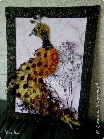 Панно из осенних листьев, веточек и лепестков. Основа и рамочка - гофрокартон.  фото 3