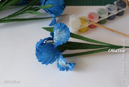 Здравствуйте дорогие жители страны Мастеров! Недавно, попробовала сделать ирисы из гофрированной бумаги. Сфотографировала этапы работы, может кому пригодится. фото 8