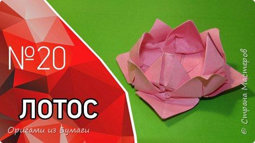 Цветок лотоса из бумаги