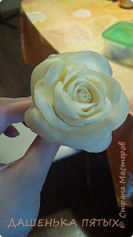 Здравствуйте дорогие мастера и мастерицы:-)решила выложить на ваш суд мои начинания в лепке из холодного фарфора;-)Правда пока не могу подобрать хороший клей для фарфора поэтому цветочки мои сильно потрескались после сушки:-(Ну пока тренируюсь:-) Гиацинт:-) фото 3