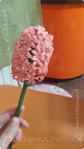Здравствуйте дорогие мастера и мастерицы:-)решила выложить на ваш суд мои начинания в лепке из холодного фарфора;-)Правда пока не могу подобрать хороший клей для фарфора поэтому цветочки мои сильно потрескались после сушки:-(Ну пока тренируюсь:-) Гиацинт:-) фото 1