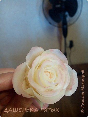 Здравствуйте дорогие мастера и мастерицы:-)решила выложить на ваш суд мои начинания в лепке из холодного фарфора;-)Правда пока не могу подобрать хороший клей для фарфора поэтому цветочки мои сильно потрескались после сушки:-(Ну пока тренируюсь:-) Гиацинт:-) фото 5
