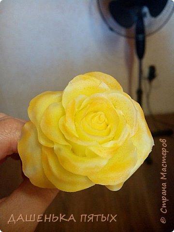 Здравствуйте дорогие мастера и мастерицы:-)решила выложить на ваш суд мои начинания в лепке из холодного фарфора;-)Правда пока не могу подобрать хороший клей для фарфора поэтому цветочки мои сильно потрескались после сушки:-(Ну пока тренируюсь:-) Гиацинт:-) фото 4