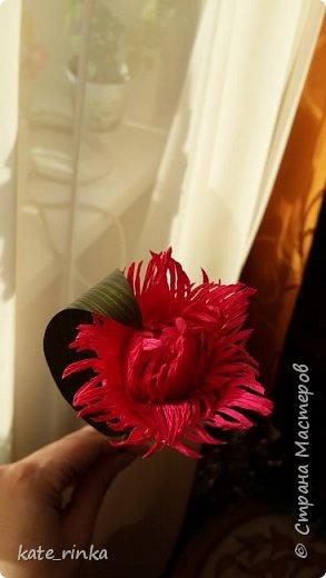 попытка создать махровый тюльпан фото 2