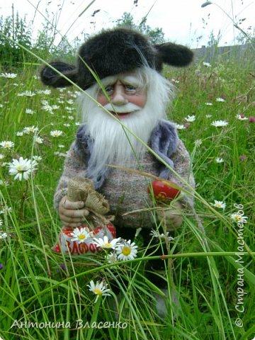Старичок- домовичок фото 7