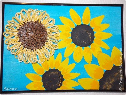 Солнечные цветы фото 1