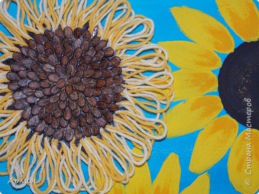 Солнечные цветы фото 3