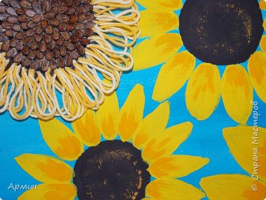 Солнечные цветы фото 4