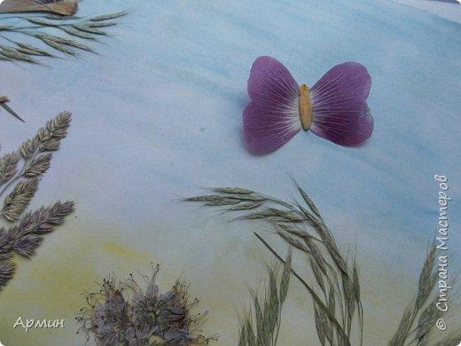 На лугу.  Плоскостная флористика. фото 9