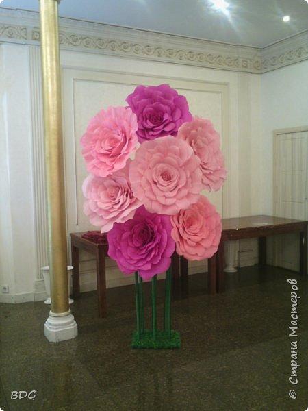 Цветы для фотосессии фото 4