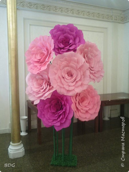 Цветы для фотосессии фото 5