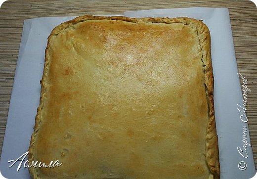 """Здравствуйте, здравствуйте! Предлагаю вам испробовать оочень вкусный, сочный  пирог с горбушей, один из любимых в нашей семье. Все, кто пробовал его, полностью меняют своё отношение к рыбным пирогам.  От стадии """"я с рыбой не ем"""" быстро переходят к следующей: """"ещё хочу"""" )). фото 13"""