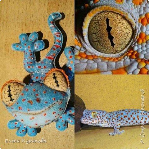 Ну,и вот такую красоту шью на заказ любителям рептилий.И,у,нас уже год как живут такие очаровашки!!! На,фото наша Фарушка,со своей почти копией)) фото 3