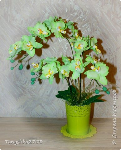Голубая орхидея фото 13