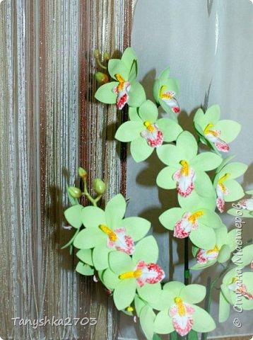 Голубая орхидея фото 12
