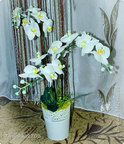 Голубая орхидея фото 3