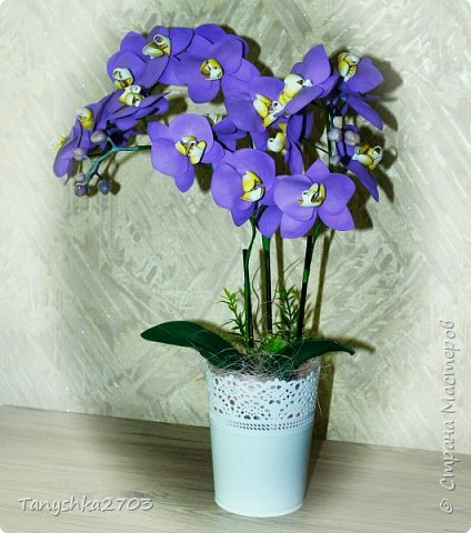 Голубая орхидея фото 5