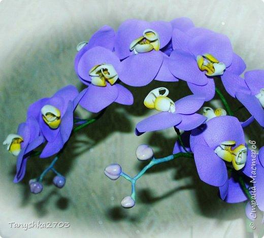 Голубая орхидея фото 6