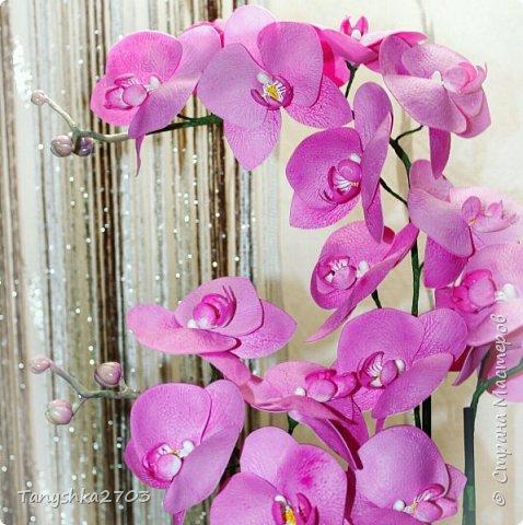 Голубая орхидея фото 10