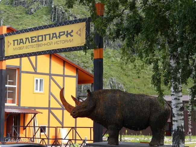 """Ну вот, и подошло время последнего алтайского фоторепортажа. """"Палеопарк"""" - это самый большой музей естественной истории в Сибири по количеству палеонтологических экспонатов. Он начал функционировать всего лишь с июля 2015 года. Музей открыл новосибирский палеонтолог Игорь Гребнев, собиравший музейные экспонаты в течение 20 лет. фото 1"""