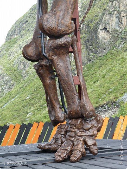 """Ну вот, и подошло время последнего алтайского фоторепортажа. """"Палеопарк"""" - это самый большой музей естественной истории в Сибири по количеству палеонтологических экспонатов. Он начал функционировать всего лишь с июля 2015 года. Музей открыл новосибирский палеонтолог Игорь Гребнев, собиравший музейные экспонаты в течение 20 лет. фото 19"""