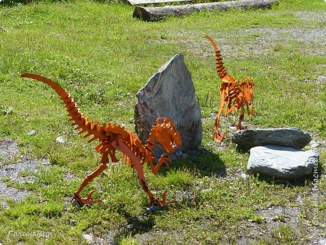 """Ну вот, и подошло время последнего алтайского фоторепортажа. """"Палеопарк"""" - это самый большой музей естественной истории в Сибири по количеству палеонтологических экспонатов. Он начал функционировать всего лишь с июля 2015 года. Музей открыл новосибирский палеонтолог Игорь Гребнев, собиравший музейные экспонаты в течение 20 лет. фото 5"""