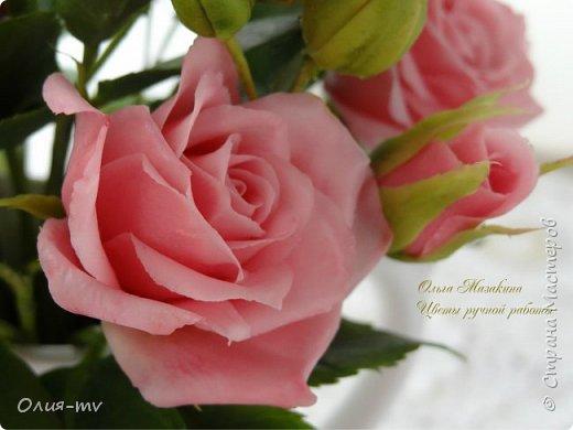 """Недолго я продержалась без лепки.. немного отдохнула и принялась за старое-цветочки лепить:))) """"Утро в Венеции"""" вот так романтично я решила назвать новую композицию.  фото 6"""