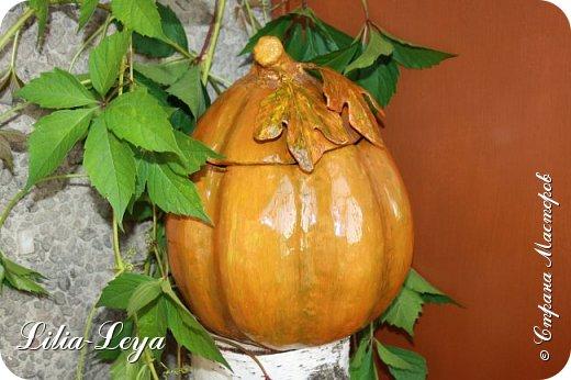 Оказалось, тыквы растут не только в огороде. Моя вызрела на кухонном столе в неурочное для созревания время. фото 1