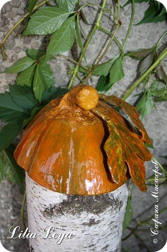 Оказалось, тыквы растут не только в огороде. Моя вызрела на кухонном столе в неурочное для созревания время. фото 9