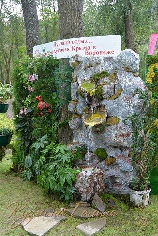 """Соблюдая сложившуюся у меня традицию,я вновь приглашаю вас на выставку """"Воронеж-сад"""" фото 105"""