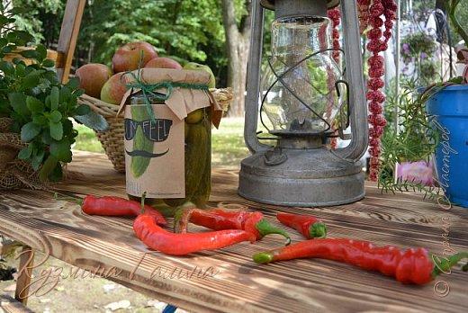 """Соблюдая сложившуюся у меня традицию,я вновь приглашаю вас на выставку """"Воронеж-сад"""" фото 107"""