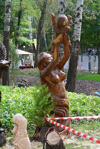 """Соблюдая сложившуюся у меня традицию,я вновь приглашаю вас на выставку """"Воронеж-сад"""" фото 49"""