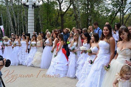 """Соблюдая сложившуюся у меня традицию,я вновь приглашаю вас на выставку """"Воронеж-сад"""" фото 32"""