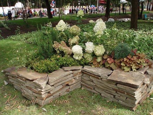 """Соблюдая сложившуюся у меня традицию,я вновь приглашаю вас на выставку """"Воронеж-сад"""" фото 99"""
