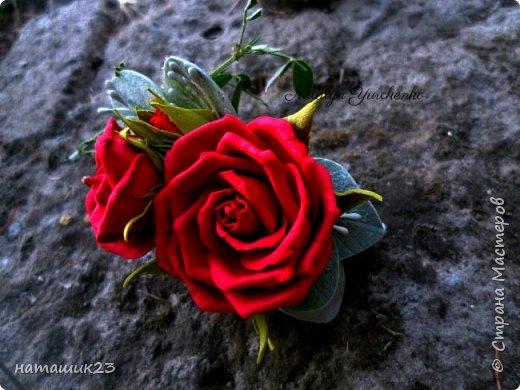 Роза Глория с листьями цинерарии, выкройки цинерарии с живых листочков(резинка) фото 5
