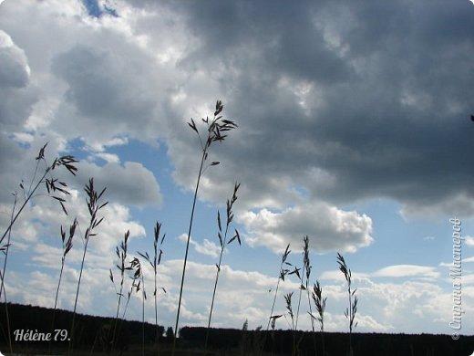Облака плывут свободно, Земля устлана цветами. На душе тепло, спокойно, Потому что лето с нами. Слышу жаворонков пенье, В небесах летают пташки. В сердце- радость и веселье, Собираю я ромашки. Устремляю взор свой дальше, Горизонт в дали так манит. Воздух свежий и прозрачный Ароматом трав дурманит.  (К. Бальмонт) фото 33
