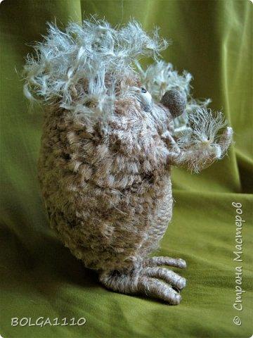 Жил-был ёжик,забавный и добрый. Но все называли его колючкой))))))     Надоело это ему и он решил стать одуванчиком.  фото 3