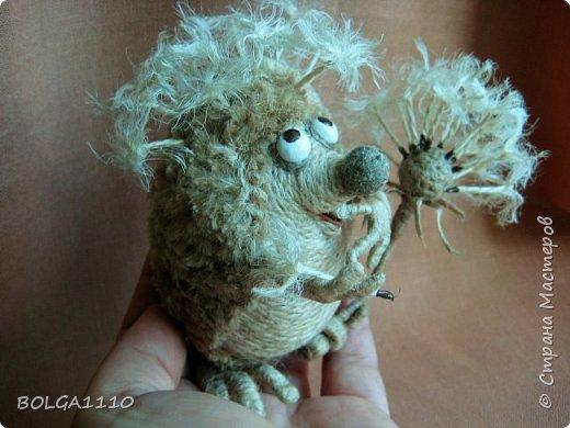 Жил-был ёжик,забавный и добрый. Но все называли его колючкой))))))     Надоело это ему и он решил стать одуванчиком.  фото 2