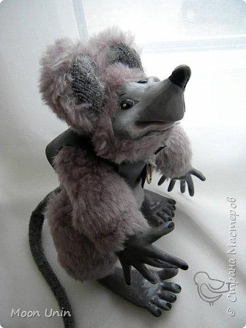 Знакомьтесь - крыс по имени Пасюк! :) Моя первая игрушка, выполненная в смешанной технике - голова и лапы из полимерной глины, туловище из искусственного меха. фото 26