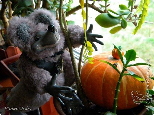 Знакомьтесь - крыс по имени Пасюк! :) Моя первая игрушка, выполненная в смешанной технике - голова и лапы из полимерной глины, туловище из искусственного меха. фото 28