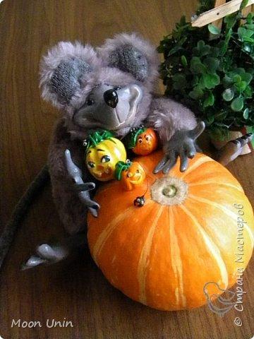 Знакомьтесь - крыс по имени Пасюк! :) Моя первая игрушка, выполненная в смешанной технике - голова и лапы из полимерной глины, туловище из искусственного меха. фото 32