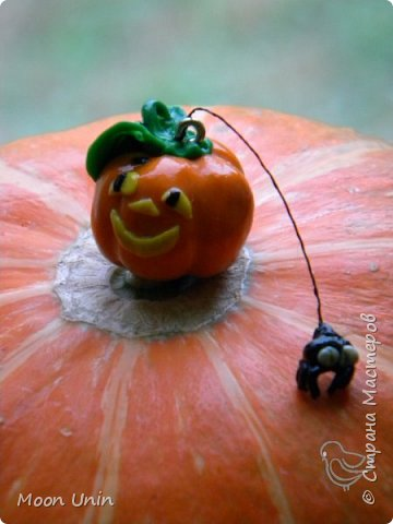 Знакомьтесь - крыс по имени Пасюк! :) Моя первая игрушка, выполненная в смешанной технике - голова и лапы из полимерной глины, туловище из искусственного меха. фото 34