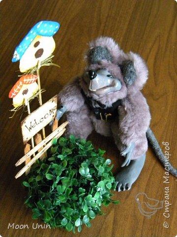 Знакомьтесь - крыс по имени Пасюк! :) Моя первая игрушка, выполненная в смешанной технике - голова и лапы из полимерной глины, туловище из искусственного меха. фото 36
