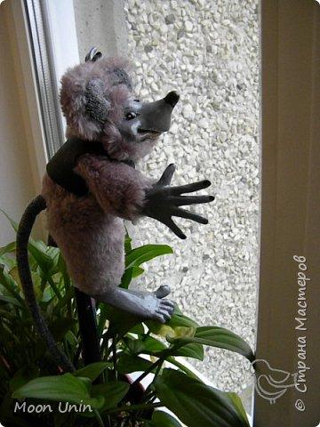Знакомьтесь - крыс по имени Пасюк! :) Моя первая игрушка, выполненная в смешанной технике - голова и лапы из полимерной глины, туловище из искусственного меха. фото 21