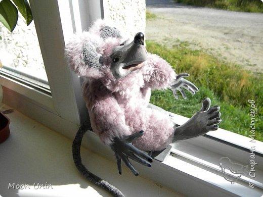 Знакомьтесь - крыс по имени Пасюк! :) Моя первая игрушка, выполненная в смешанной технике - голова и лапы из полимерной глины, туловище из искусственного меха. фото 23