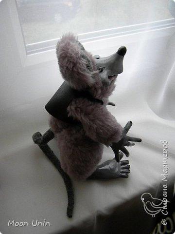 Знакомьтесь - крыс по имени Пасюк! :) Моя первая игрушка, выполненная в смешанной технике - голова и лапы из полимерной глины, туловище из искусственного меха. фото 25