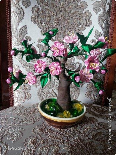 Третья моя болезнь - канзаши и все что с эти связано - готовилась к выпускному из сада дочери - сделала в подарок воспитателям фото 19