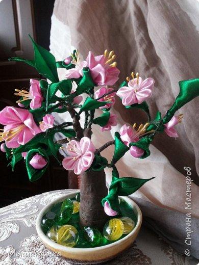 Третья моя болезнь - канзаши и все что с эти связано - готовилась к выпускному из сада дочери - сделала в подарок воспитателям фото 20