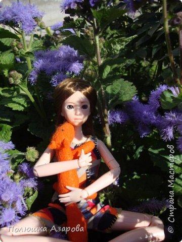 Рассказ от лица Дины: - Здрувствуйте! Меня зовут Дина, я чистокровная Obitsu, молда Харука. Во мне 25см роста и у меня есть Лис. фото 2